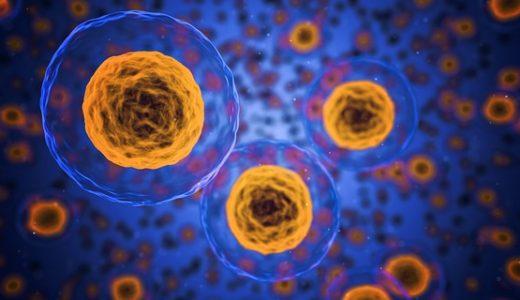 バリウム飲むとガンになる可能性アップ?既得権益の事実とは?
